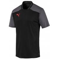 Camiseta Puma ftblNXT Pro Tee