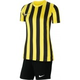 Equipación Mujer de Fútbol NIKE Striped Division IV P-CW3816-719